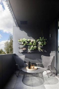 urban garden ideas black balcony with succulent wall planter