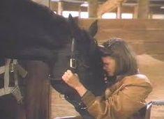 Horse Movies, Dark Horse, Google Images, Horses, Fictional Characters, Fantasy Characters, Horse