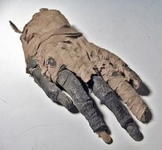 IMAGE via Oddities and Curiosities A fabulous story about a mummy's hand was recounted on Monday 13 August 1934 in the Western Dail. Shrunken Heads For Sale, Pretty Halloween Costumes, Halloween Stuff, Uncommon Objects, Human Oddities, Egyptian Mummies, Old Hands, Macabre, Creepy