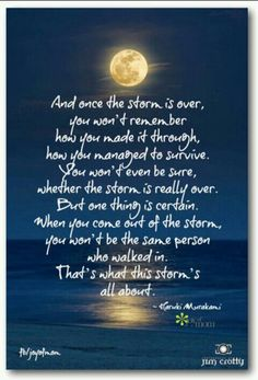 You won't be the same person after the Storm - which is what that storm is all about.