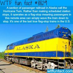 Hurricane Turn - WTF fun facts