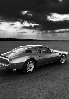 Classic American Cars — h-o-t-cars: Photo by Harisankar S - voiture 2019 Mustang Cobra, Mustang Fastback, 1969 Chevy Chevelle, Chevrolet, Pontiac Cars, Pontiac Firebird Trans Am, Pony Car, Modified Cars, American Muscle Cars
