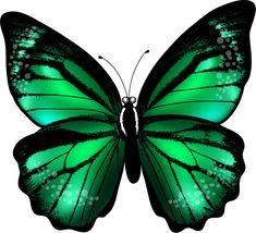 Faça a minha vida ter mais cor e borboletas em mim...*✿*