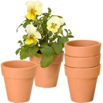 Mini Terra-Cotta Clay Pots, 3-ct. Packs