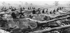 Tiger IIs Lining up for the battle of Kursk . 1943 ...