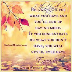 Celebrating Thanksgiving with 10 of my favorite gratitude quotes. From Oprah to ... - http://naik.biz/celebrating-thanksgiving-with-10-of-my-favorite-gratitude-quotes-from-oprah-to/