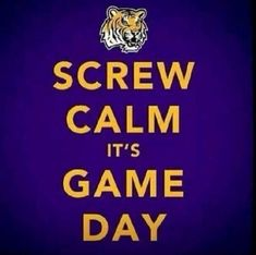 The Fanatic Group LSU Tigers Musical Pen