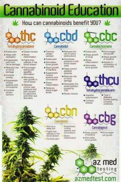 Natural compound medicinal alternatives