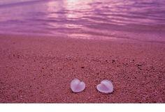 pink sand beach bahamas - Buscar con Google