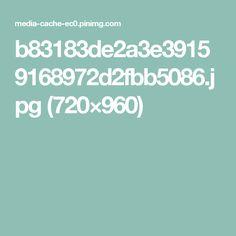 b83183de2a3e39159168972d2fbb5086.jpg (720×960)