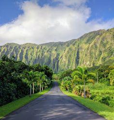 Hou0027omaluhia Botanical Gargden Situated Against The Majestic Kou0027olau Range,  Hou0027omaluhia, One Of The Five Honolulu Botanical Gardens, Is Located On The  ...