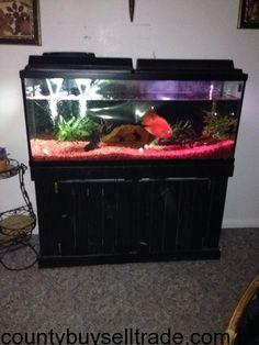 55 Gallon Fish Tank 55 Gallon, Fish Tank, Fishbowl, Aquarium, Aquarium Fish Tank, Water Tank, Aquariums, Aquarius