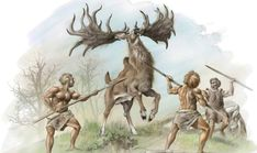 Group of Neanderthal hunters attacking a male Irish elk (Megaloceros giganteus). Prehistoric World, Prehistoric Creatures, Prehistoric Wildlife, Hominid Species, Irish Elk, Early Humans, Extinct Animals, Stone Age, Thing 1