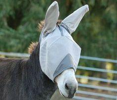 Cashel Crusader Fly Mask Mule Donkey Ears Foal by Cashel. $24.99