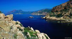 À la fois terrestre et marine, la réserve abrite un grand nombre d'espèces…