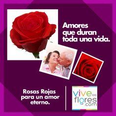Por que creemos en un amor para toda la vida, queremos ayudarte a celebrarlo! ROSA ROJA TIPO EXPORTACION de la mejor calidad, directamente desde el cultivo. Expresa lo que sientes con FLORES! Te esperamos en www.vivelasflores.com