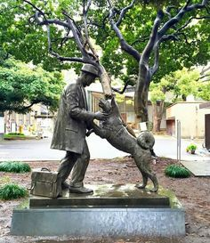 The day Hachikō finally met his master again Hachiko Dog, Animals And Pets, Cute Animals, Grave Monuments, Man Beast, American Akita, Japanese Dogs, Akita Dog, Loyal Dogs