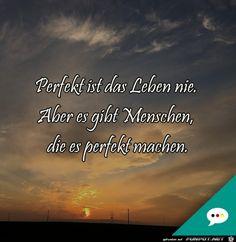 perfektes leben.jpg