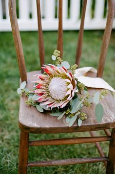 exotic and incredibly beautiful single bloom of a Southafrican Protea and Eucalyptus leafs