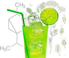Absinth: trendy Getränk mit Nebenwirkung?