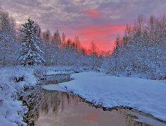 snowy pink sunrise
