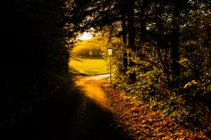 Herbst in Niederösterreich / Austria Light And Shadow, Celestial, Explore, Sunset, Outdoor, Autumn, Outdoors, Sunsets, Outdoor Games