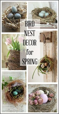 This post contains a variety of ways to use bird nests in your spring home decor including tablescapes wall decor flower arrangements and Bird Nest Craft, Bird Nests, Spring Home Decor, Spring Crafts, Silk Flower Arrangements, Flower Wall Decor, Rustic Wall Decor, Easter Crafts, Easter Decor