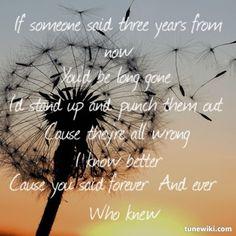 Pink - Who Knew #song #lyrics #Pink