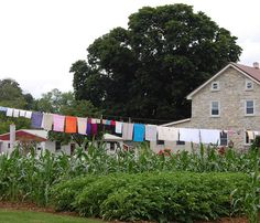 Monday is Wash Day in the Amish Country - Lancaster County, Pennsylvania by UGArdener