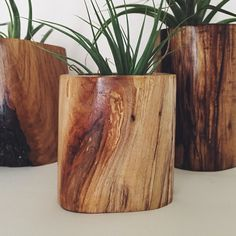 Camp Hunt | camphunt.co | Chicago Wooden succulent / plant planters