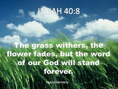 The Word of God will stand forever www.facebook/godinfitness