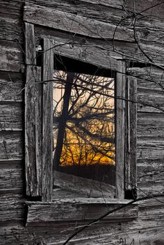 Sunset Reflection In Window
