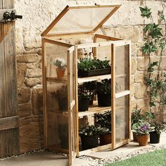 Mini greenhouse idea.
