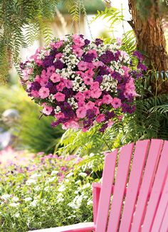 Learn about the Best Plants For Hanging Baskets. Hanging baskets filled with colorful flowers and plants are very showy and elegant and adorn any garden. Pink Garden, Dream Garden, Container Plants, Container Gardening, Succulent Containers, Container Flowers, Vegetable Gardening, Organic Gardening, Hanging Flower Baskets