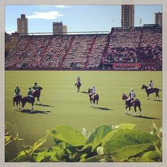 La Dolfina vs. La Natividad. World's best polo players!