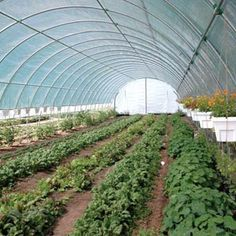 Cold Frames & High Tunnels - Premium Round Style High Tunnel 20'W x 12'H x 48'L