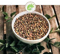 Παραγωγή και διάθεση αυθεντικής παραδοσιακής Φακής Εγκλουβής Λευκάδος. Η φακή Εγκλουβής είναι μοναδικό προϊόν παγκοσμίως και η παραγωγή της χάνεται στα βάθη των αιώνων. Δεν χρησιμοποιούνται κανενός είδους χημικά λιπάσματα και ζιζανιοκτόνα κατά την διάρκεια της παραγωγής.  Είναι 100% φυσικό - βιολογικό ανώτερο προϊόν από την γη της Εγκλουβής. www.gigagora.gr/node/1297