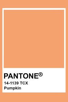 Colour Pallete, Colour Schemes, Color Trends, Color Combos, Paleta Pantone, Pantone Orange, Pantone Swatches, Color Swatches, Pantone Colour Palettes