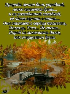 ~•♥Счастливости♥•~ Motivation, Aquascaping, Literatura, Pictures, Good Morning, Thoughts, Nice Asses, Determination, Inspiration