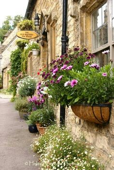 LOVE these window boxes and potted plants in Castle Combe, England! Castle Combe, Window Boxes, Window Planters, Fall Planters, Shade Plants, Potted Plants, Hanging Plants, Garden Plants, Flower Boxes
