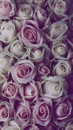 27 New Ideas wallpaper iphone vintage flowers florals pink roses Wallpaper Iphone Vintage, Iphone 7 Plus Wallpaper, Beautiful Wallpapers For Iphone, Vintage Floral Wallpapers, Apple Watch Wallpaper, Best Iphone Wallpapers, Trendy Wallpaper, Wallpaper Backgrounds, Vintage Backgrounds