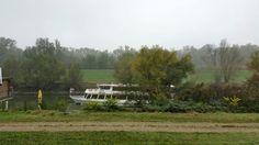 an der Donau Vineyard, Outdoor, Nature, Outdoors, Vine Yard, Vineyard Vines, Outdoor Games, The Great Outdoors