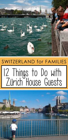 Wondering what to do with your out-of-town guests? There are plenty of wonderful affordable activities within an hour or two of Zurich, including classic Swiss nature outings, cultural experiences, and low key family fun. Indoor Things To Do, Jungfraujoch, House Guests, Living In Europe, Alpine Lake, Indoor Swimming Pools, Visit France, Cultural Experience, Swiss Alps