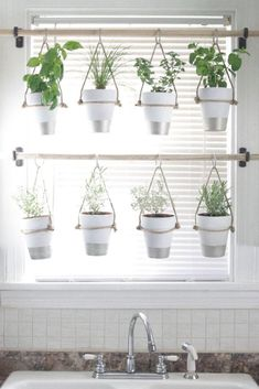 These what to grow in vertical garden #verticalgarden