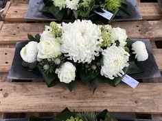 Geraniums, Flower Arrangements, Cabbage, Vegetables, Flowers, November, Gardening, Decor, Art