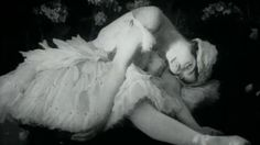 the dying swan - YouTube