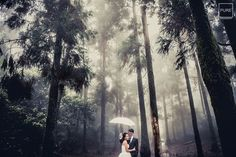 With natural beauty as the backdrop, this rain forest prewedding photo is bursting with enchantment!