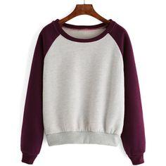 Raglan Sleeve Color-block Thicken Sweatshirt (94 EGP) ❤ liked on Polyvore featuring tops, hoodies, sweatshirts, multicolor, raglan sleeve top, block tops, colorful tops, color block sweatshirt and colorblock top