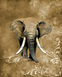 Safari Elephant Wall Art Print Brown by Fineartreflections on Etsy, $18.00