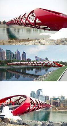 bridge over the Bow River, Calgary, Alberta, Canada. Designed by Santiago Calatrava